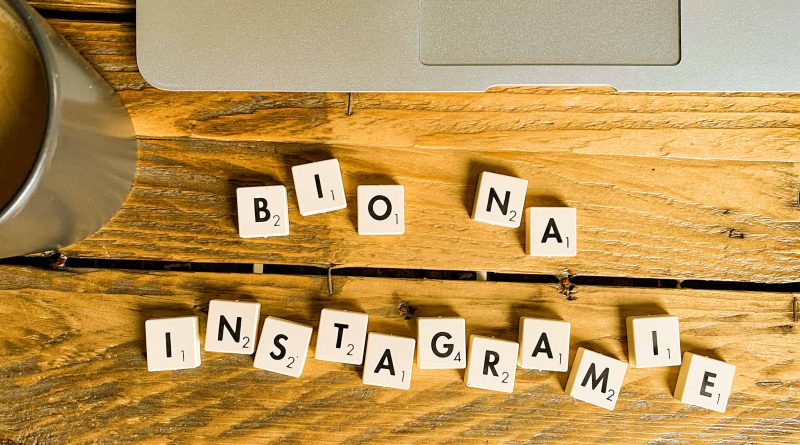 Co to jest bio na instagramie